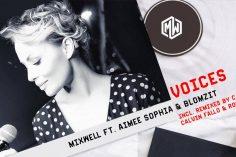 Fistaz Mixwell feat. Aimee Sophia - Voices (Caiiro's NYC Remix)