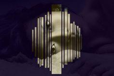 Jaguar Paw, Denny Dugg - Genevieve (Original Mix)