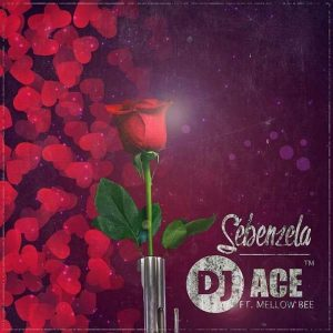 DJ Ace - Sebenzela feat. Mellow Bee