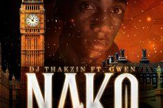 Dj Thakzin - Nako (feat. Gwen)