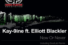 Kay-9ine feat. Elliott Blackler - Now Or Never (SoulLab Remix)