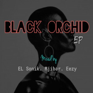 Eazy, El Sonik & Mjibar - Black Orchid-Dark City (Original Mix)