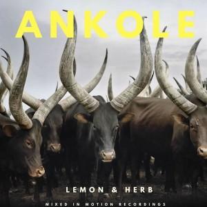 Lemon & Herb - Ankole