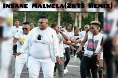 Dladla Mshunqisi, Dj Tira & Distruction Boyz - Pakisha (Insane Malwela 2k18 Remix)