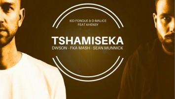 Kid Fonque & D-Malice - Tshamiseka (Sean Munnick Remix)