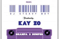 DJ Steavy Boy feat. Kay Zo - Bhampa 2 Bumper