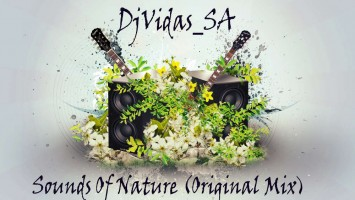 DjVidas SA - Sounds Of Nature (Original Mix)