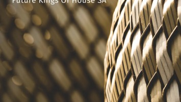 Future Kings of House SA - 3 O'clock (Deep Mix)