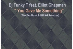 DJ Funky T Ft. Elliot Chapman - You Gave Me Something (Fka Mash Re-Glitch). south african deep house, latest south african house, funky house, new house music 2018, best house music 2018, latest house music tracks, afro deep house