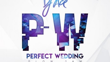 DJ Ace - Perfect Wedding