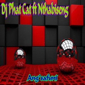 DJ Phat Cat - Ang'safuni (feat. Nthabiseng), latest house music, deep house tracks, house music download, south african afro house songs, afro house music, afro deep house, tribal house music, best house music, african house music