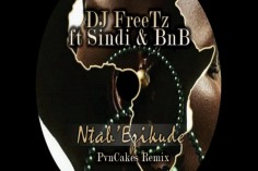 DJ FreeTz feat. Sindi & BnB - Ntab' Ezikude (PvnCakes Remix), new south african afro house music, tribal house music, afro deep house