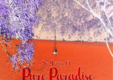 Sir Young SA - Pure Paradise (Original Mix), new south african afro house music, afro house 2018 download mp3