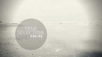 VA - True Selection Vol.05