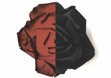 Lowheads, PillowTalk – Black Paradise (Dazzle Drums Remix)