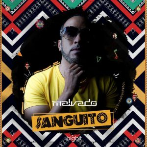 Dj Malvado feat. Robertinho & Vado Poster - Sanguito (Afro Mix), angola afro house musica, afro house 2018, download afro house songs mp3
