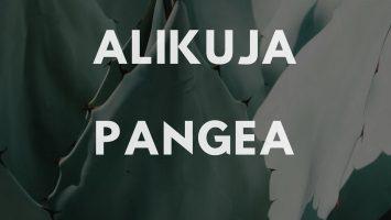Alikuja - The Scientist Yaaquub
