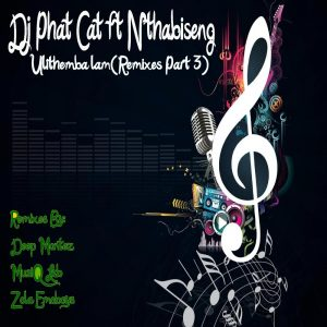 DJ Phat Cat feat. Nthabiseng - Ulithemba lam (Zola Emoboys Drum n Bass Drag Remix), NEW AFro house music, latest house music, deep house tracks, house music download, club music, afro house music, new house music south africa, afro deep house, tribal house music