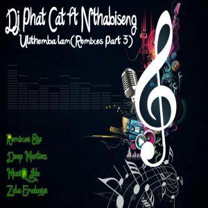 DJ Phat Cat feat. Nthabiseng - Ulithemba lam (Zola Emoboys Drum n Bass Drag Remix)