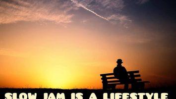 DJ Ace - Slow Jam Is A LifeStyle (AmaPiano Mix)