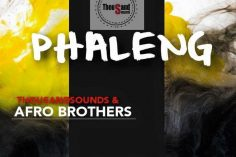 Thousand Sounds & Afro Brotherz - Phaleng (Original Mix)