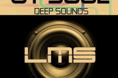 OT Soul - Deep Sounds (Original Mix)