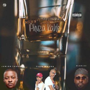Team Mosha, Blaklez & Junior Taurus - Phuza Kahle, amapiano 2019, new amapiano music, amapiano songs, afro house, new south african music