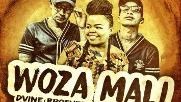 Dvine Brothers Ft. Nokwazi - Woza Mali