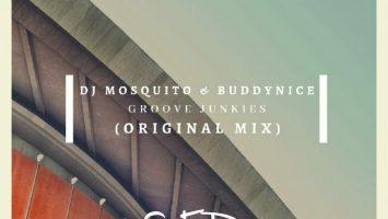 DJ Mosquito & Buddynice - Groove Junkies, new deep house music, deep house 2019