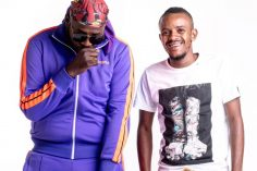 Kabza De Small & DJ Maphorisa - Avenue Session Vol. 8, amapiano 2019, new amapiano music, sa amapiano music download