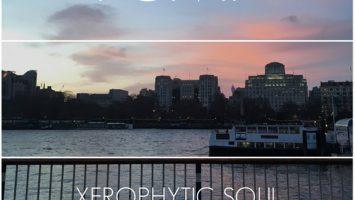 Xerophytic Soul - Black Rose (Original Mix)