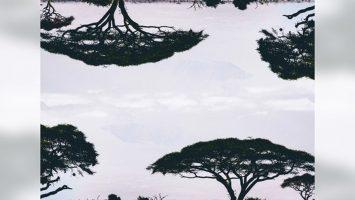 CrazyBlaqBoyz - Orchards EP