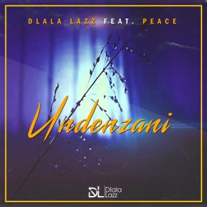 Dlala Lazz - Undenzani (feat. Peace), new sa music, new south african gqom songs, gqom 2019 download mp3, new gqom music, afro house songs, sa afro house music