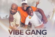 BiggFun & Ed Harris - Vibe Gang Iphakathi (Original Mix)