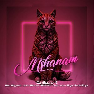 DJ Boonu - Mshanam (feat. Distruction Boyz, Madanon, Rude Boyz, Stilo Magolide & Jaiva Zimnike), new gqom music, gqom 2019, lates gqom songs, south african gqom music, gqom mp3 download