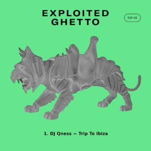 DJ Qness - Trip To Ibiza, latest house music, afrotech, house music download, club music, afro house music, new house music south africa, local house music, afro deep tech