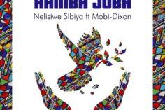 Nelisiwe Sibiya - Hamba Juba (feat. Mobi Dixon), club music, new south africa music, afro house 2019 download mp3, latest afro house songs